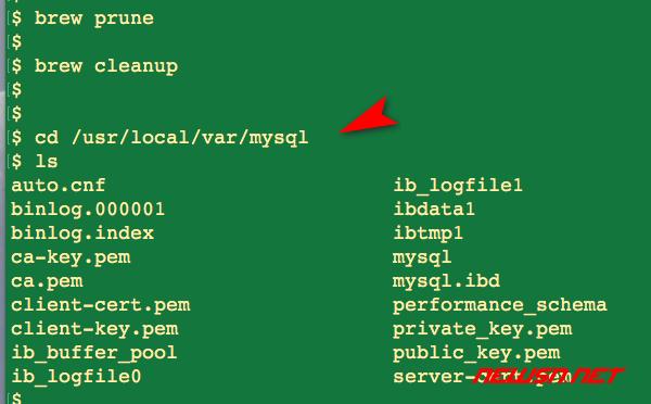 如何清理brew安装的mysql?mysql的数据文件在哪里? - mysql-data